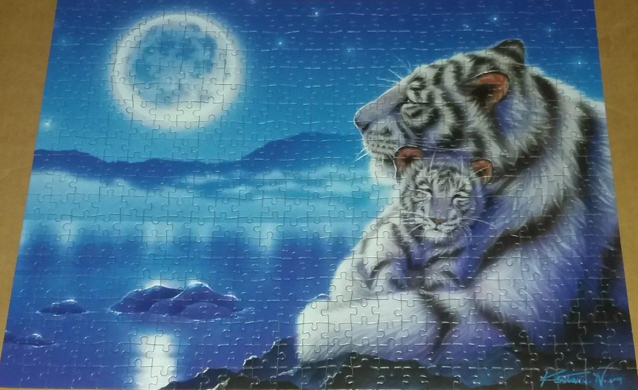 500-tygr-a-tygrik